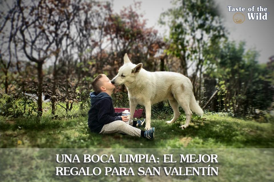San Valentín Taste of the Wild